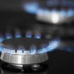 Cuisson faut il choisir l 39 lectricit ou le gaz - Cuisiner au gaz ou a l electricite ...